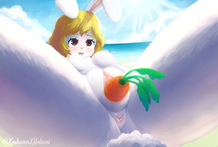 piece) (one nami Harvest moon magical melody gina